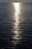 Moonlight Path On Water
