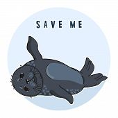 Cute Ringed Seal, Save Me Slogan, Isolated Adult Nerpa Sticker, Animal Extinction Problem, Red List, poster