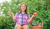 Eat Healthy. Summer Harvest Concept. Organic Harvest. Healthy Lifestyle. Kid Gathering Vegetables Na poster