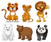 image of tiger cub  - Illustration of the six wild animals on a white background - JPG