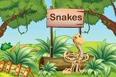 stock photo of tree snake  - Illustration of the snakes in the hills beside a wooden signboard - JPG