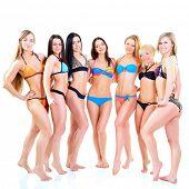 girls in bikini, seven attractive caucasian young women in swimsuits over white