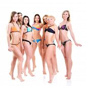 group of girls in bikini, seven attractive caucasian young women in swimsuits over white