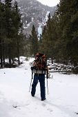 picture of beartooth  - hiking up the lake fork in montana - JPG