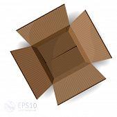 Opened cardboard box. Vector.
