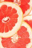 Grapefruit slices background