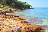 Stones and sea. Rocks on the coastline.