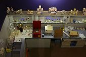 MAYRHOFEN, AUSTRIA - MARCH 18 : Laboratory at the milk and cheese factory in Erlebnis Sennerei on March 18, 2013 in Austria