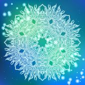 Vector round decorative ornamental mandala