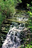 Falls On Chedoke Trail
