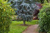 Elgin Biblical Garden pathway.