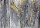 Background-old Pine Boards