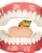 Frosch im Hals