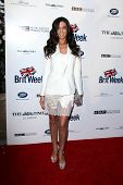 LOS ANGELES - APR 22:  Terri Seymour at the 8th Annual BritWeek Launch Party at The British Residenc