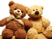 Teddybären Freunde