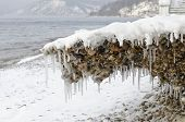 Baikal shore. Pebbles covered by ice