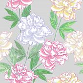 Grey Seamless pattern  with peonies
