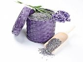 stock photo of baste  - Dried and fresh lavender flowers in a bast basket with wooden shovel - JPG