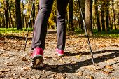 Nordic walking: adventure and exercising concept - woman hiking, legs and nordic walking poles in autumn nature