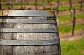 Wine Barrel In Front Of  Napa Vineyard