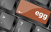 Egg Word On Computer Pc Keyboard Key