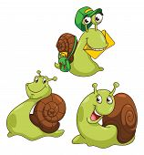 Snail Cartoon Illustration