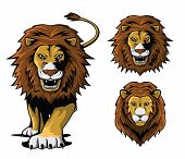 Lion Illustration Set