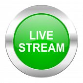 live stream green circle chrome web icon isolated