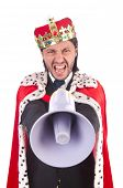 King businessman in funny concept isolated on white
