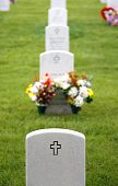 Flowers and Headstones in Military Cemetery