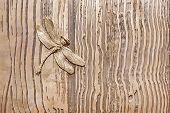 Iron Dragonfly