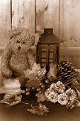 Fall Flowers And Teddy Bear