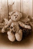 Rustic Sepia Toned Teddy Bear