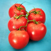 Ripe Red Tomatoes On Blue Background
