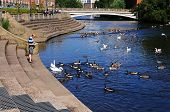 Feeding the ducks, Derby.