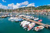 Harbour And Town Of Lerici In Summer