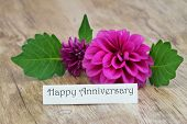 Happy anniversary card with purple dahlia flower