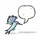cartoon hummingbird