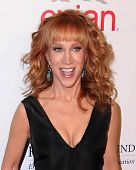 LOS ANGELES - OCT 14:  Kathy Griffin at the Fulfillment Fund Stars Benefit Gala 2014 at Beverly Hilt