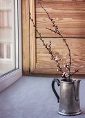 Blossoming Branches In The Coffee Pot