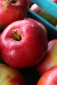 Juicy apples in box, close-up