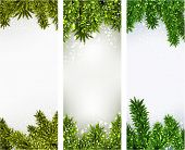 Winter abstract vertical banners with spruce twigs. Christmas vector background. Eps10.