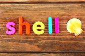 Shell word formed with colorful letters on wooden background