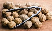 foto of nutcracker  - Walnuts and a nutcracker on a wooden cutting board - JPG