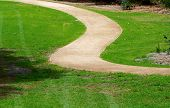 Curving pathway through grass.