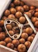 image of nutcracker  - Detail of Macadamia Nuts in a Cardboard Box together with nutcracker - JPG