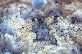 Dirty crystals of melted snow close-up