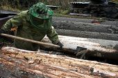 Preparation Of Wood Logs For Processing