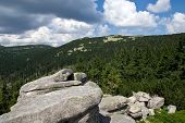 Nature of Giant Mountains, Krkonose Mountains
