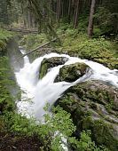 Waterfall in Olympic National Park